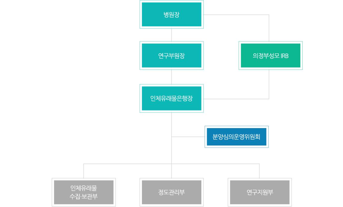 병원장-연구부우너장&의정부성모 IRB-인체유래물은행장-분양심의위원회-인체유래물수집·보관부&정도관리부&연구지원부